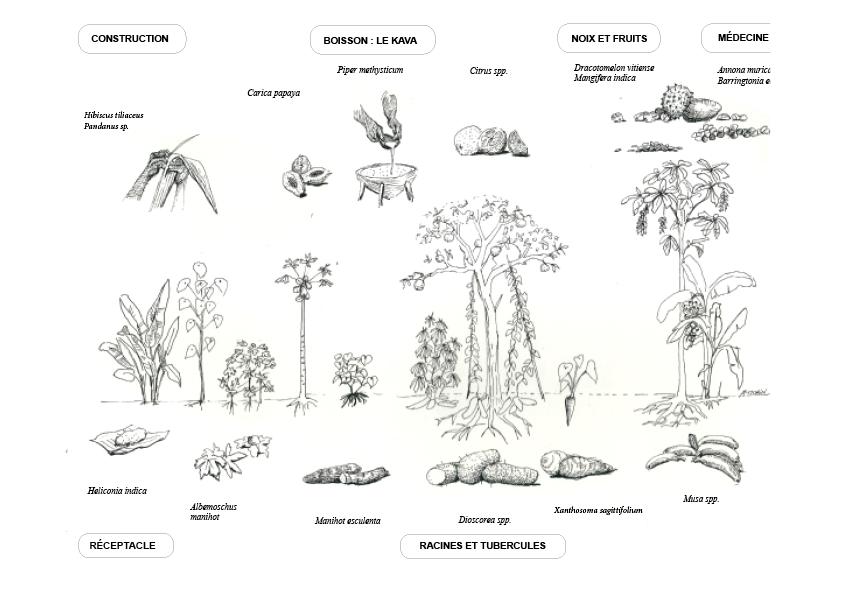 Utilisation d'un écosystème