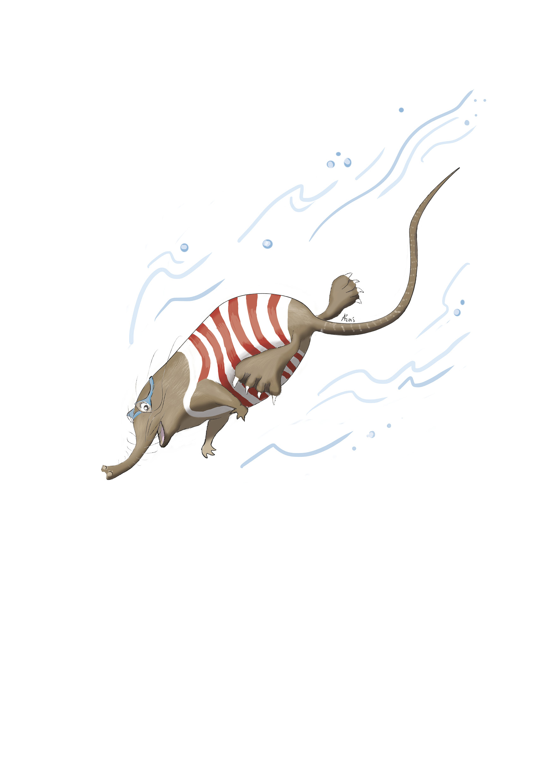 dessins CMJN rhino ss ecriture