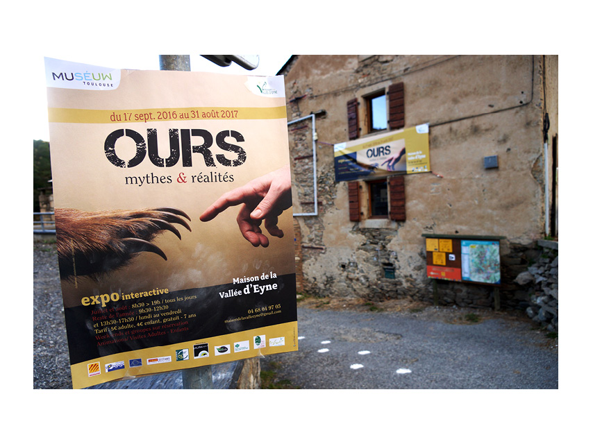"""Affiche """"ours"""""""